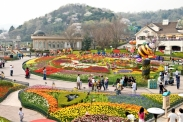 Bán vé máy bay đi Hàn Quốc ở quận 6 Đại lý bán vé máy bay đi Hàn Quốc tại quận 6