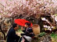 kinh nghiệm du lịch Tây Bắc Tham dự chợ tình Khâu Vai tìm hiểu văn hóa quê hương của